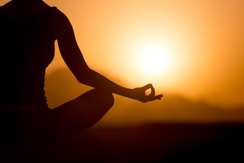 stage-retraite-yoga-meditation-randonnees-plantes